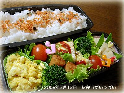 090312お弁当1