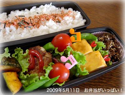 090511お弁当1
