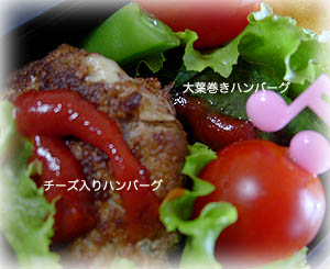 090511お弁当2