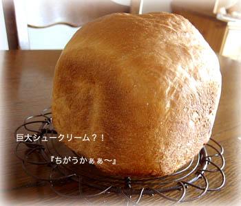 090511食パン2