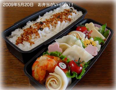 090520お弁当1