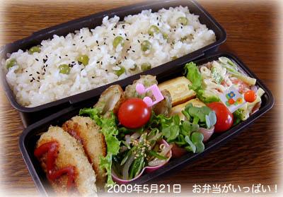 090521お弁当1