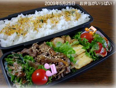090525お弁当1