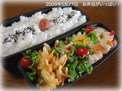090527お弁当0