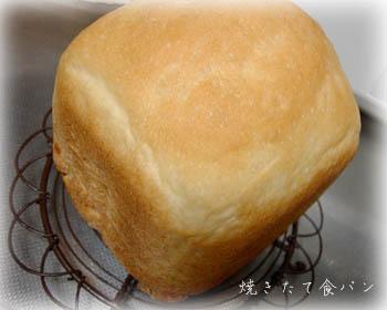 090603食パン