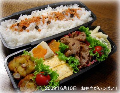 090610お弁当1