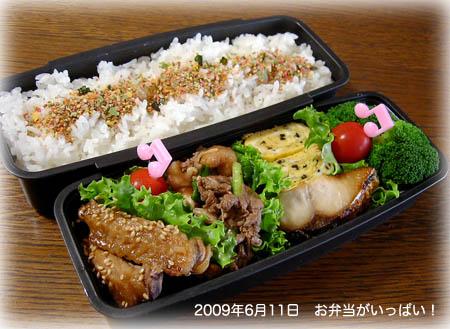 090611お弁当1