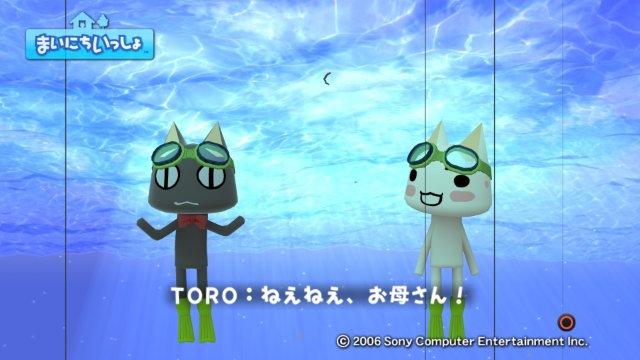 torosute2008/12/29 アメジョ5