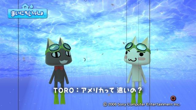 torosute2008/12/29 アメジョ6