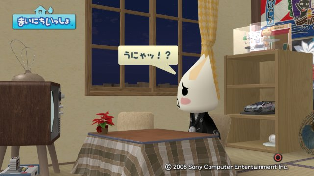 torosute2008/12/31 マラソンダイジェスト 17区 5