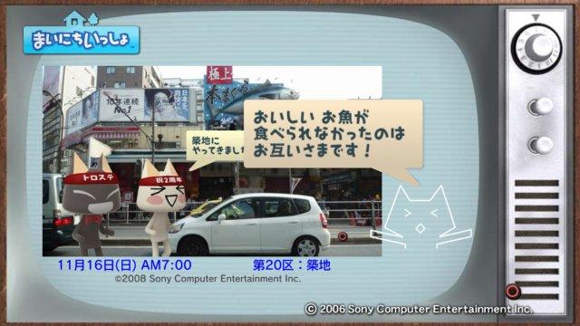 torosute2008/12/31 マラソンダイジェスト 20区