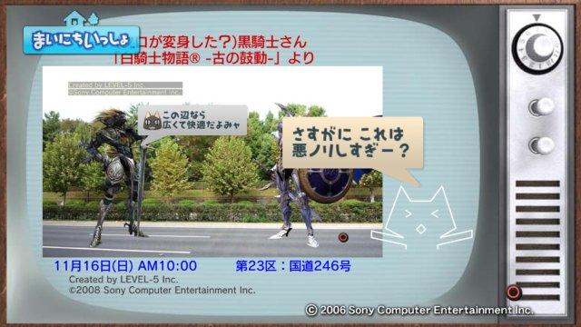 torosute2008/12/31 マラソンダイジェスト 23区 3