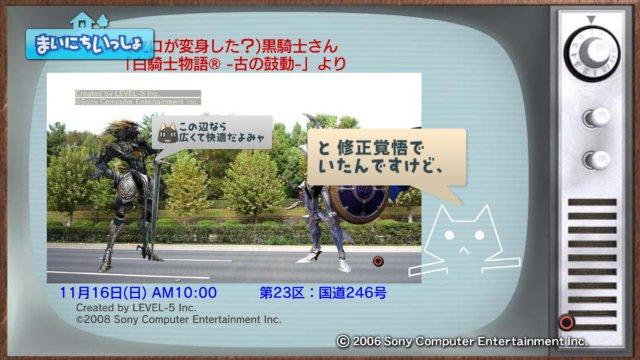 torosute2008/12/31 マラソンダイジェスト 23区 4