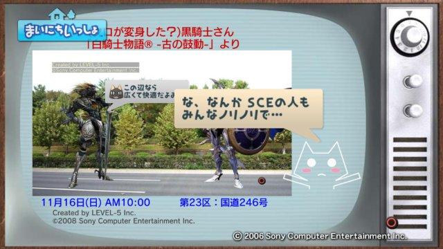 torosute2008/12/31 マラソンダイジェスト 23区 5