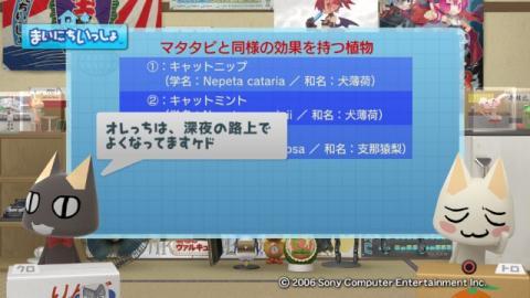 torosute2009/1/13 マタタビ 6