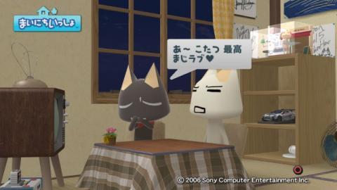 torosute2009/1/19 冷え性対策 15
