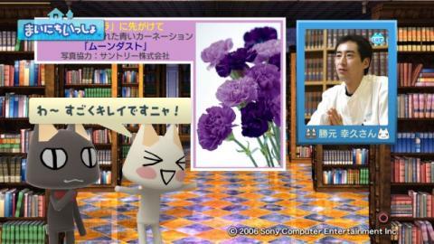 torosute2009/1/29 青いバラ 8