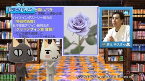 torosute2009/1/29 青いバラ 9