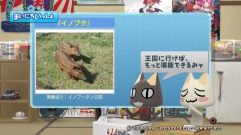 torosute2009/2/9 ご当地グルメ 和歌山編 7