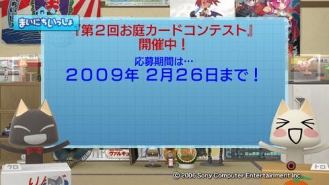 torosute2009/2/15 お庭カードコンテスト中間発表