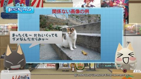torosute2009/2/15 お庭カードコンテスト中間発表 13