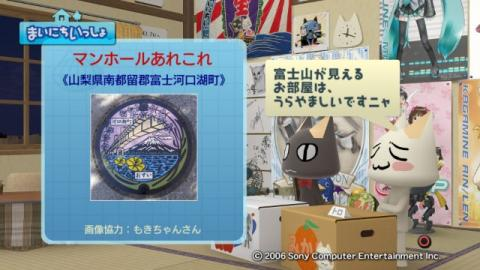 torosute2009/2/23 アートなマンホール 3