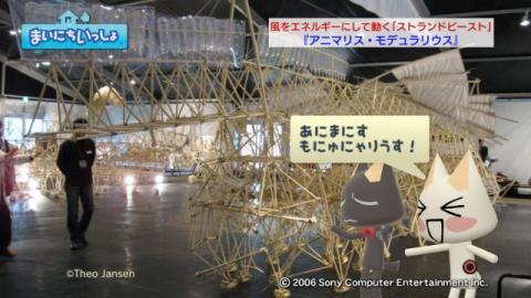 torosute2009/2/27 ビーチアニマル