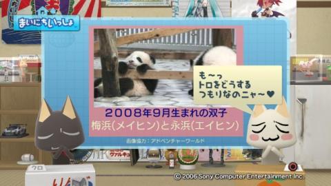 torosute2009/3/15 パンダランド 3