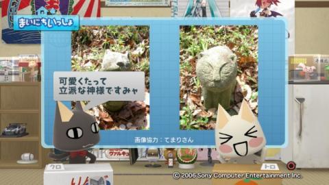 torosute2009/3/26 猫神様 7