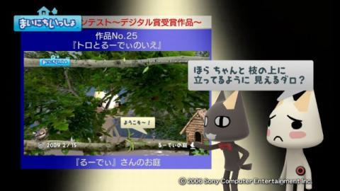 torosute2009/4/18 第2回お庭カードコンテスト結果発表 37