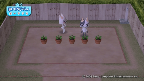 torosute2009/4/24 今日のお庭