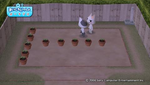 torosute2009/4/25 今日のお庭 2