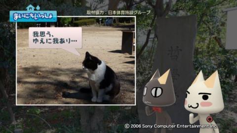 torosute2009/5/4 哲ネコ