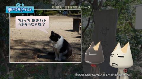 torosute2009/5/4 哲ネコじゃない!