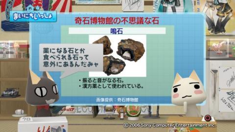 torosute2009/5/12 奇石博物館 4