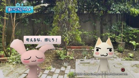 torosute2009/5/13 ジュンのお気楽ガーデニング 7