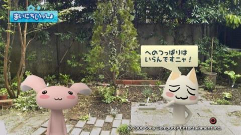 torosute2009/5/13 ジュンのお気楽ガーデニング 12