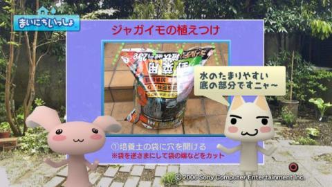 torosute2009/5/13 ジュンのお気楽ガーデニング 14