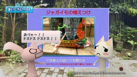 torosute2009/5/13 ジュンのお気楽ガーデニング 15