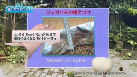 torosute2009/5/13 ジュンのお気楽ガーデニング 16