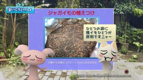 torosute2009/5/13 ジュンのお気楽ガーデニング 17
