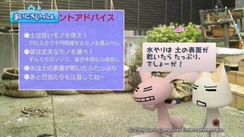 torosute2009/5/13 ジュンのお気楽ガーデニング 19