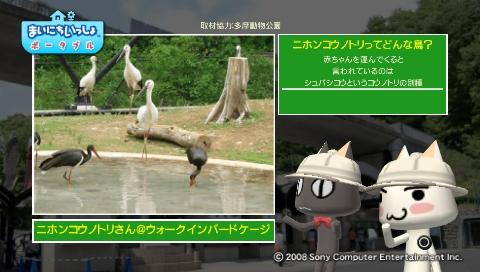 torosute2009/5/28 アジアの沼地 5