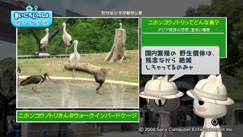 torosute2009/5/28 アジアの沼地 6