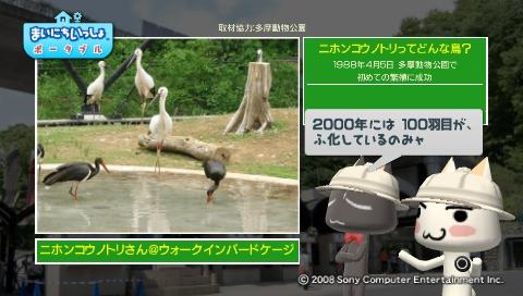 torosute2009/5/28 アジアの沼地 7