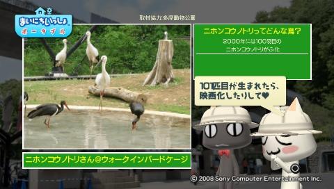 torosute2009/5/28 アジアの沼地 8