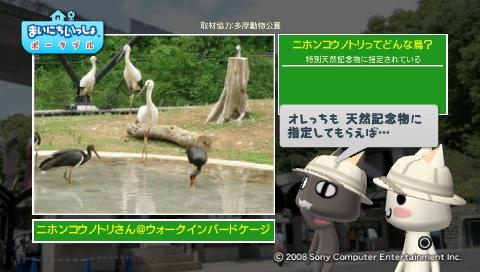 torosute2009/5/28 アジアの沼地 9