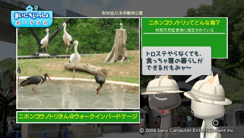 torosute2009/5/28 アジアの沼地 10