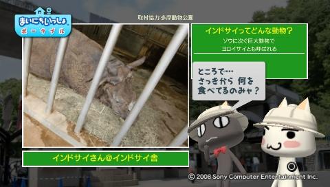 torosute2009/5/28 アジアの沼地 13