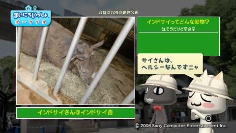 torosute2009/5/28 アジアの沼地 14